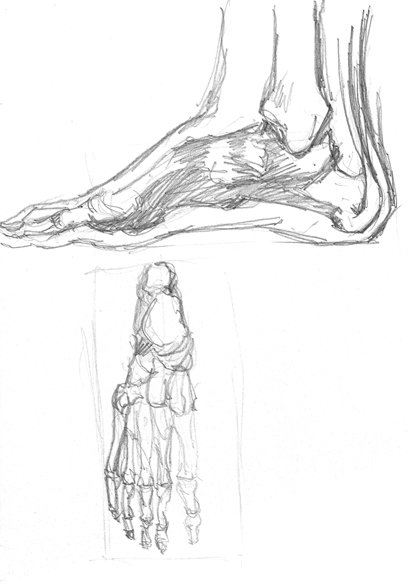 Spartan Training Camp #11 - 50 Gestures + Optional Foot Study